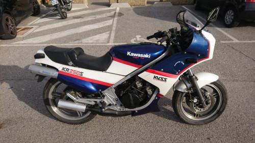 KAWASAKI KR 250 S